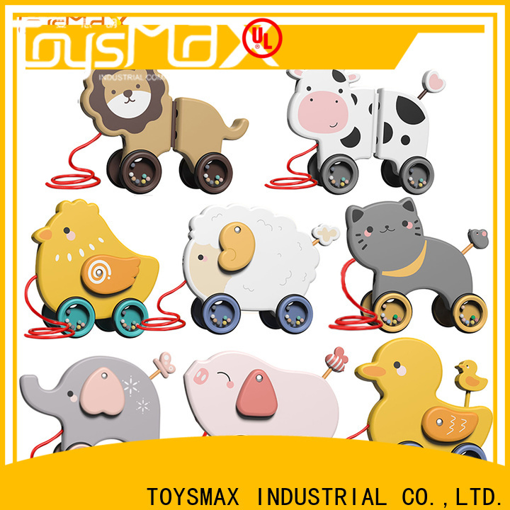 Toysmax educational toys for kids customized for girls
