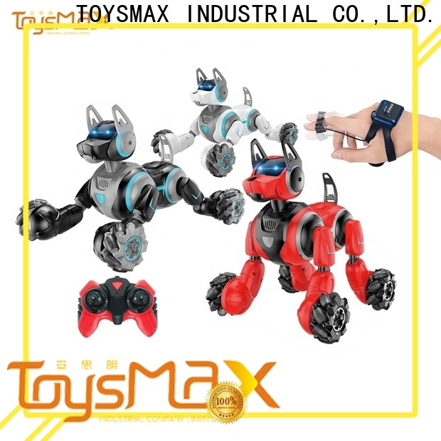 Toysmax quality r/c toys manufacturer for boys